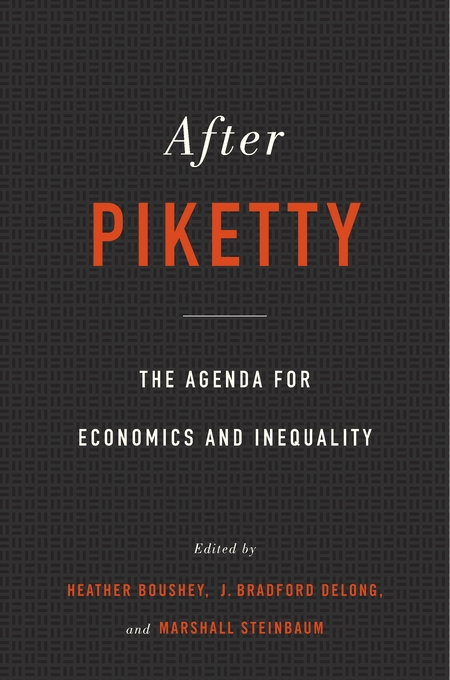 afterpiketty